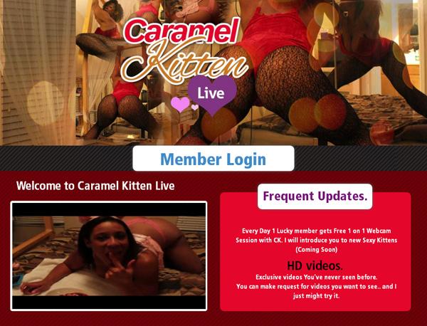 Caramel Kitten Live 帐号