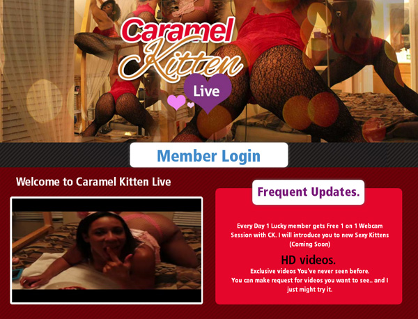 Caramel Kitten Live Membership