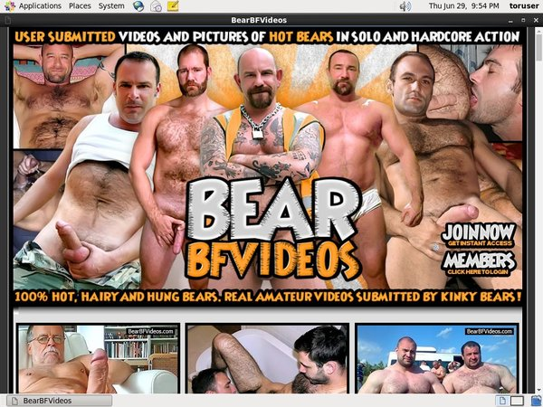 Bearbfvideos.com Bill.ccbill.com